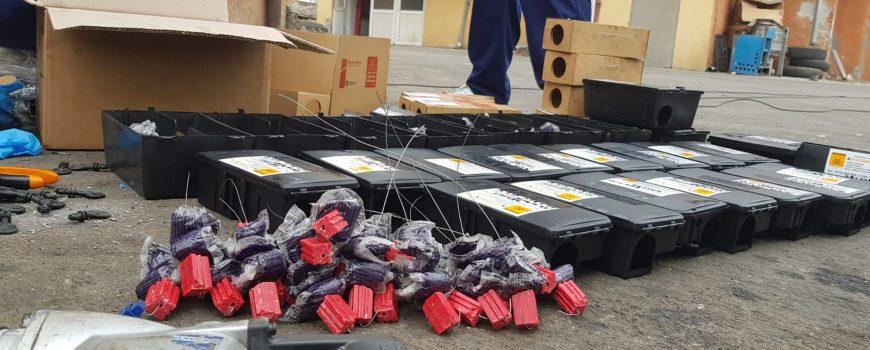 Firme de deratizare in Bucuresti
